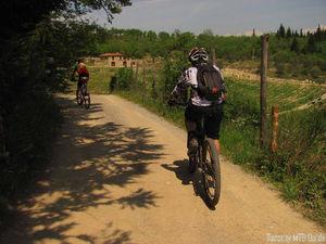 perillo biker