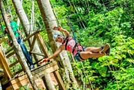 Treetop zip trip 75